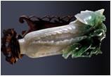 十大国宝第一名 翠玉白菜万人迷