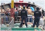 大陆渔船盗捕15吨珊瑚 被台湾查扣